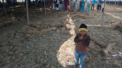 Photo of ضلع گڈا میں سالانہ تبلیغی اجتماع کی تیاریاں مکمل، جمعہ کے روز سے ہوگا آغاز