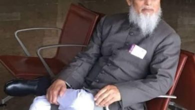 Photo of مولانا نورعالم خلیل امینی کا بورڈنگ پاس