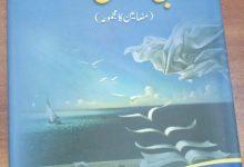 Photo of ادبی جہتیں