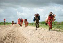 Photo of آئیندہ تین دہائیوں میں 21.6 کروڑ لوگ ہونگے  نقل مکانی کو مجبور